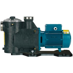 Swimming and Whirpool Pumps